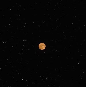 迷人的月色