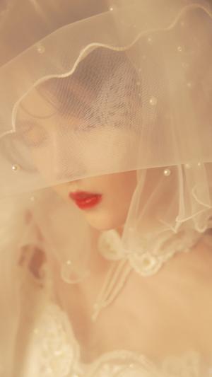 唯美惊艳的新娘子