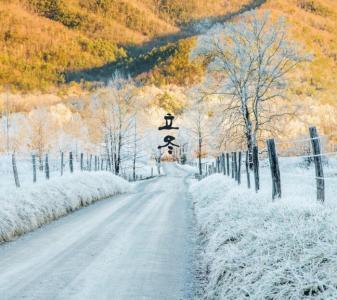 立冬时节的美