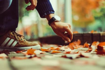 落叶知秋的韵味
