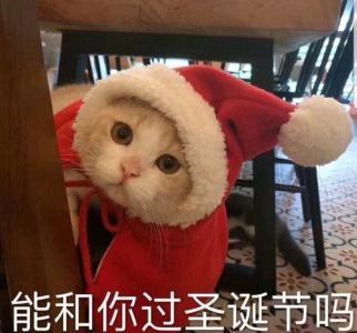 圣诞节可爱微信头像