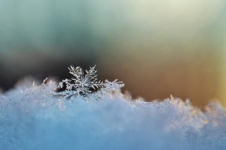 那一片雪花的美