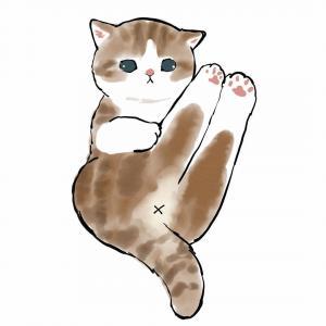 最近很火的猫咪手绘头像