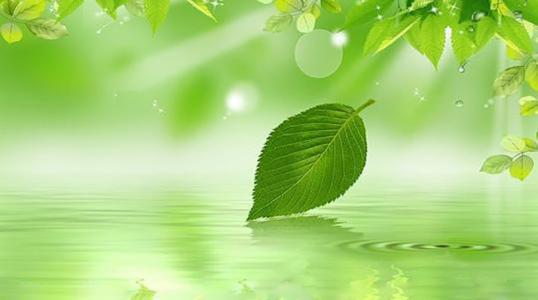 绿色山水护眼桌面