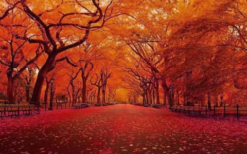 二十四节气立秋美景