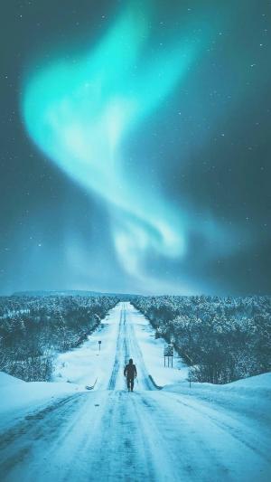 北极的美丽极光