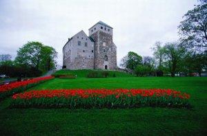 美丽风景王子的城堡
