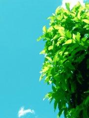 蓝色天空手机图片
