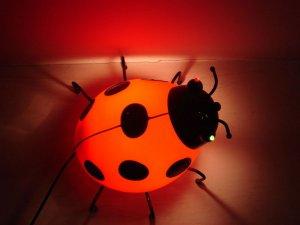 红色透明的七星瓢虫玩具