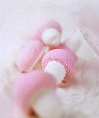粉可爱蘑菇小玩具