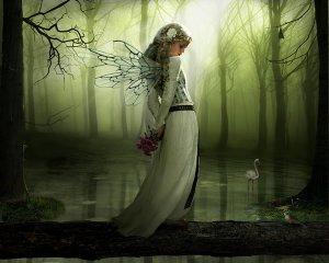 幽暗森林中的天使