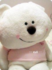 可爱的白色小熊