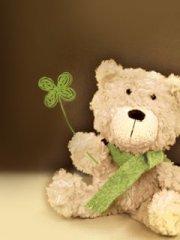可爱的小熊手机图片