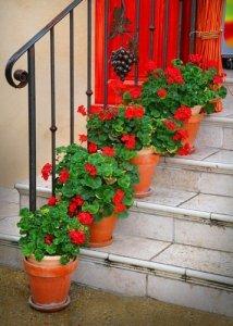 楼梯上美丽的一线