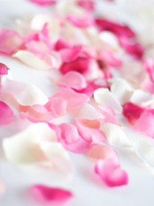 爱情玫瑰花 那些花儿可爱图片