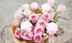 唯美的小清新花朵图片