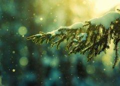 美麗的雪景意境圖片