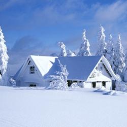 冬天美丽的雪景图片
