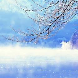 冬天唯美雪景意境图片