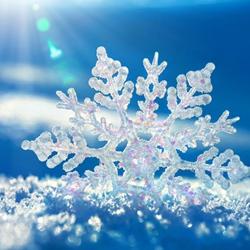 冬天雪花可爱风景图片