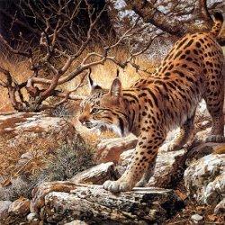 逼真写实手绘野生动物图片
