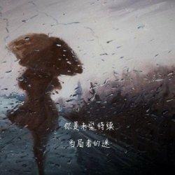 伤感风景静物图片QQ皮肤