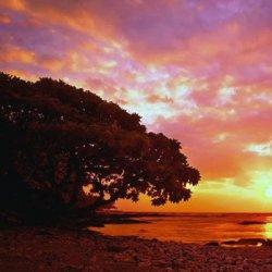 关于傍晚落日夕阳的风景图片