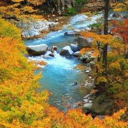 秋天红叶和瀑布风景图片大全