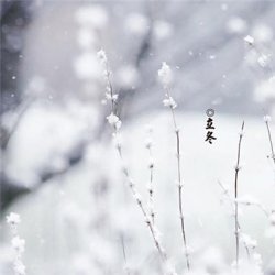 最新立冬节气图片唯美带字