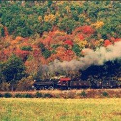 好看的火车沿路的风景图片