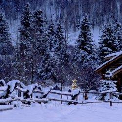 唯美的冬天雪后风景图片