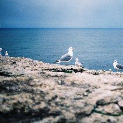 唯美大海海景海滩图片