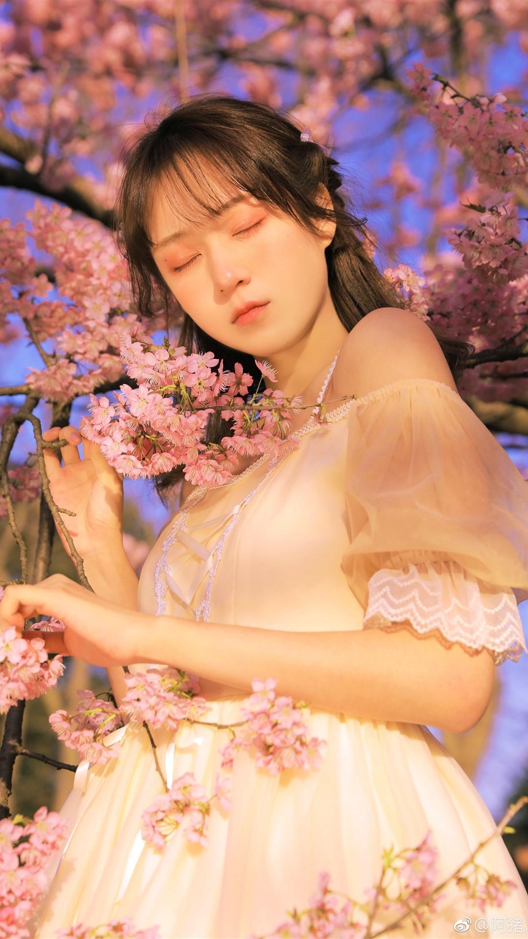 樱花美女写真