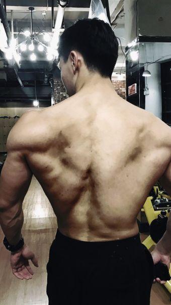 健硕的后背
