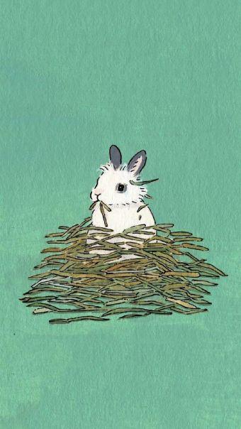 可爱卡通兔子